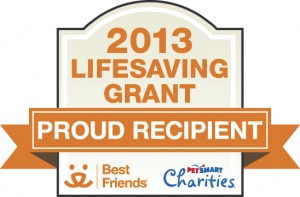 lifesaving_grant_logo_2013_WEB